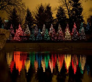 Обои на телефон отражение, светящиеся, рождество, праздник, огни, деревья, christmas trees