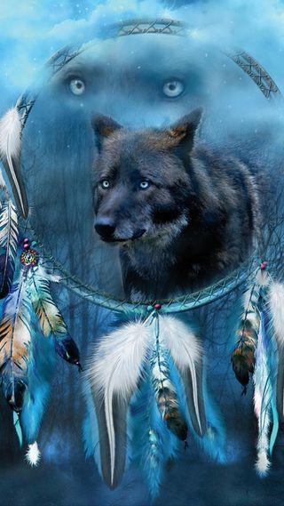 Обои на телефон мечта, синие, родной, перо, ловец, животные, волк, американские