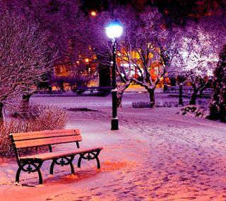 Обои на телефон парк, зима, ночь