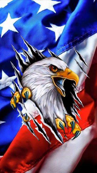 Обои на телефон орел, флаг, американские