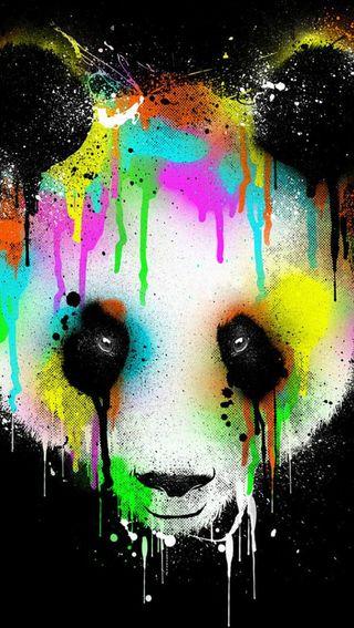 Обои на телефон панда, черные, цветные, картина, животные, брызги, абстрактные