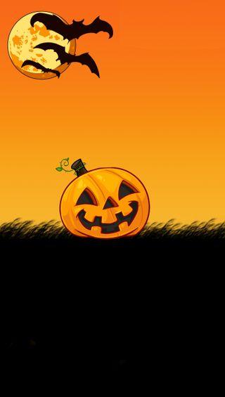 Обои на телефон летучая мышь, хэллоуин, оранжевые, pumkin