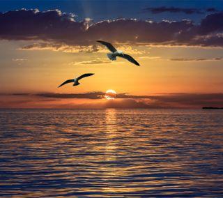 Обои на телефон волны, солнце, пляж, океан, облака, новый, море, крутые, закат, вода, hd