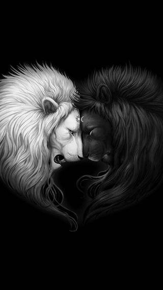 Обои на телефон лев, солнце, луна, sun and moon lions
