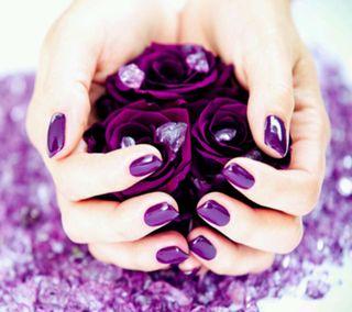 Обои на телефон фиолетовые, розы