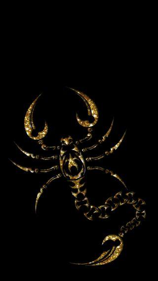 Обои на телефон скорпион, черные, золотые, wallpaper black, golden scorpion