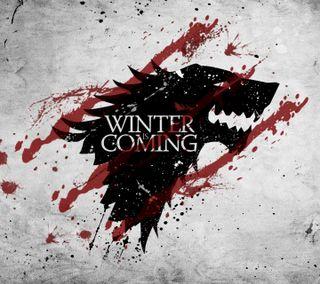Обои на телефон погода, ужасы, зима, животные