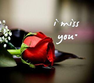 Обои на телефон скучать, цветы, ты, романтика, розы, природа, любовь, love
