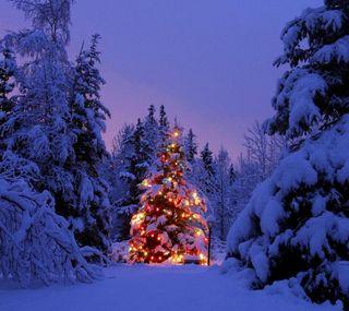 Обои на телефон огни, снег, рождество, зима, дерево