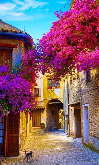 Обои на телефон архитектура, цветы, старые, прекрасные, дом, natures, countryside