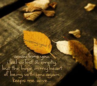 Обои на телефон чувствовать, ты, сердце, пустой, надежда, листья, живой, высказывания, lost