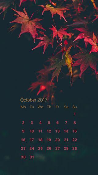 Обои на телефон продуктивность, октябрь, календарь, красые, red october, oct