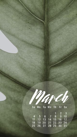 Обои на телефон продуктивность, март, календарь, календари, зеленые, green march