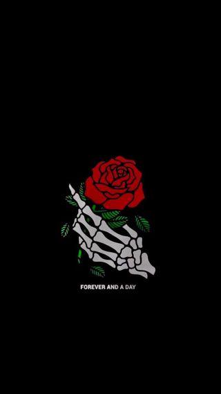 Обои на телефон скелет, розы, один