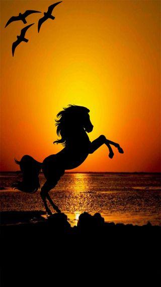 Обои на телефон эффект, лошадь, животные, векторные