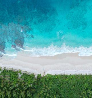 Обои на телефон честь, пляж, океан, honor v20