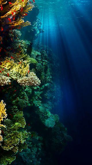 Обои на телефон океан, цветные, магия, абстрактные, hd ocean, hd