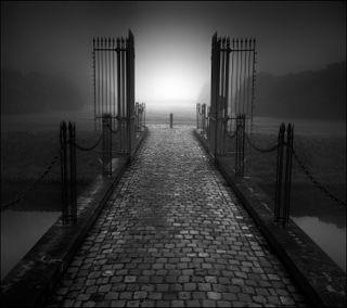 Обои на телефон туман, ворота