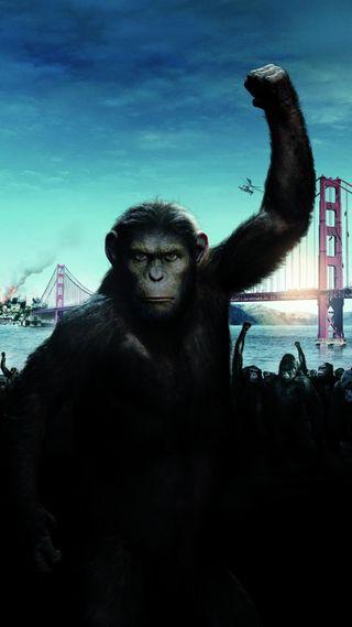 Обои на телефон сильный, фильмы, планета, обезьяны, город, война, revolution, planet of the apes