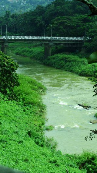 Обои на телефон шри ланка, фотография, спокойствие, река, мост, зеленые, вода, hd, gloomy, a river