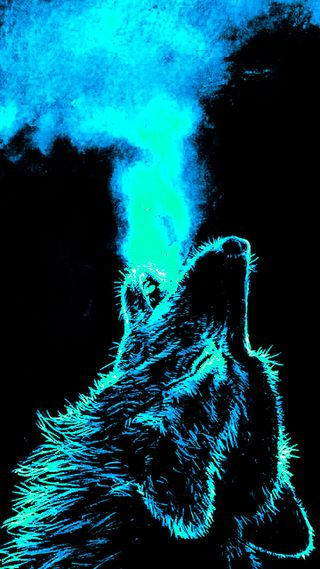 Обои на телефон темные, животные, волк
