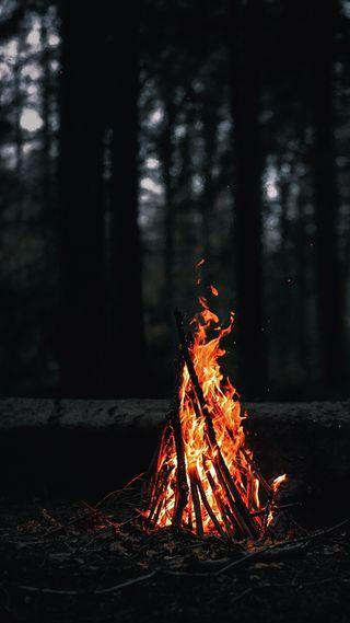 Обои на телефон огонь, дерево, hd