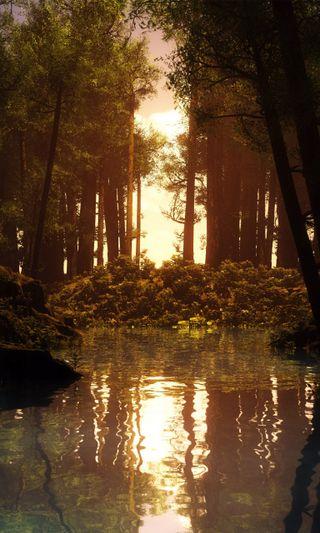 Обои на телефон отражение, чистые, природа, озеро, лес, классные, закат, деревья
