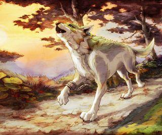 Обои на телефон зельда, волк, link