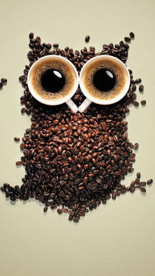 Обои на телефон еда, сова, напиток, милые, любовь, кофе, забавные, жизнь, глаза, love