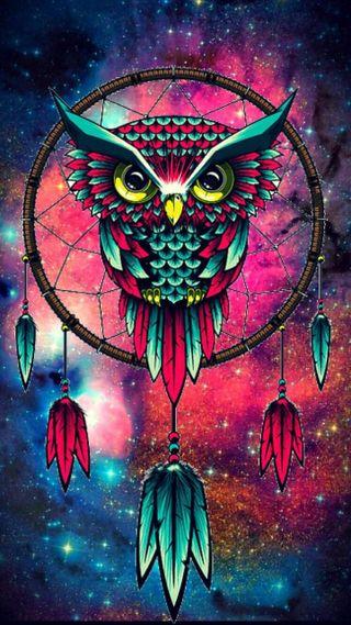 Обои на телефон сова, природа, неоновые, owl-wallpaper