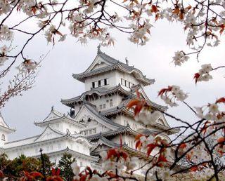 Обои на телефон вишня, японские, цветение, мост, замок, весна, hirosaki