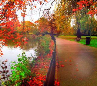 Обои на телефон романтика, природа, осень, красые, дорога, romantic road