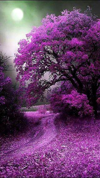 Обои на телефон фиолетовые, пейзаж, луна, зеленые
