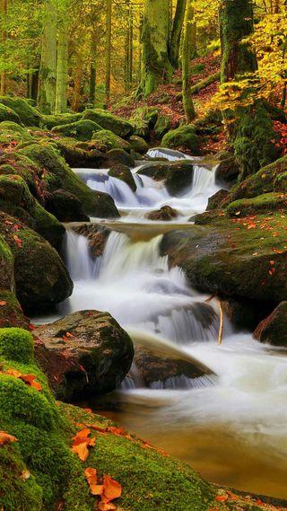 Обои на телефон водопад, хуавей, стандартные, природа, оригинальные, лес, зеленые, естественные, huawei, 4k