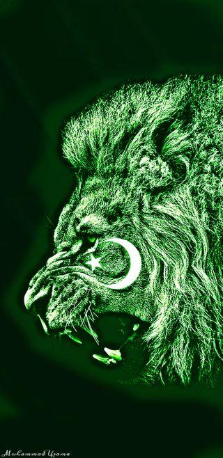 Обои на телефон пакистан, флаг, король, pakistanflag 14august, pakistan  flag king, 2019