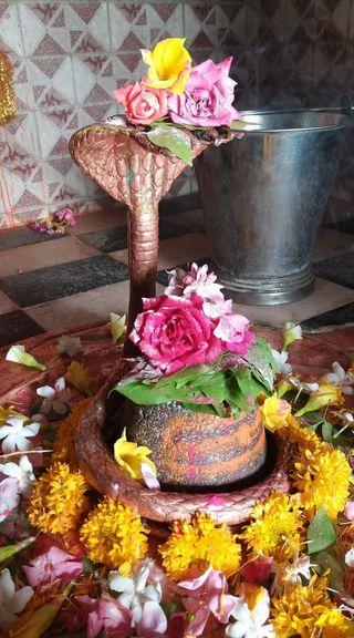 Обои на телефон лотус, шива, счастливые, махадев, кекс, кактус, день рождения, вино, mahadev shivay shiva, happy birthday cupcake, happy