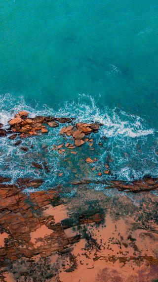 Обои на телефон шри ланка, фотография, удивительные, птицы, море, природа, пляж, океан, красочные, глаза, берег, coastal birds-eye