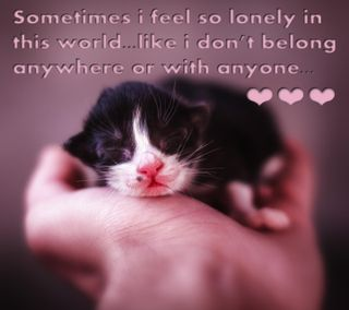 Обои на телефон чувствовать, одиночество, одинокий, высказывания, feel so lonely
