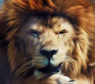 Обои на телефон джунгли, лев, король