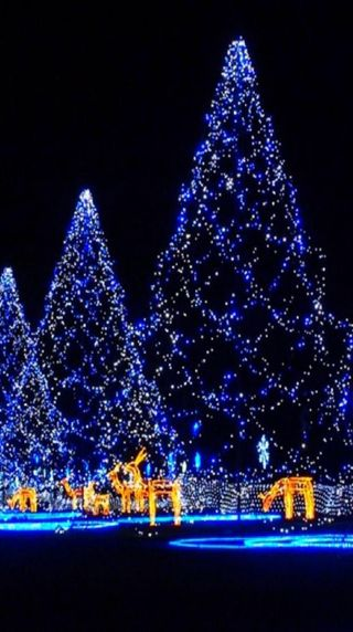 Обои на телефон праздник, синие, рождество, дерево
