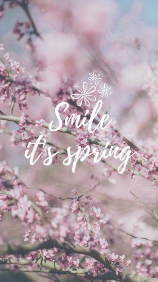 Обои на телефон смайлики, весна, цветы, розовые, иран