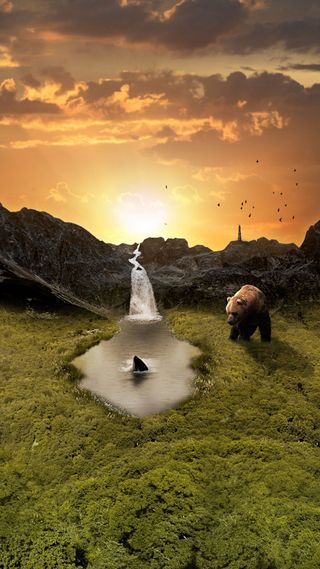 Обои на телефон акула, солнце, рок, птицы, природа, осень, озеро, небо, медведь, животные, долина, вода, the valley