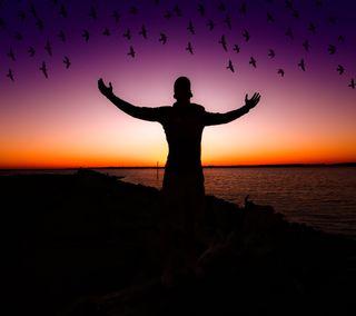 Обои на телефон вечер, птицы, естественные, in the evening, click