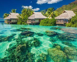 Обои на телефон рай, тропические, океан, лето