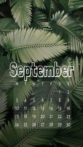 Обои на телефон сентябрь, календарь, джунгли, zcalsep18, jungle sep