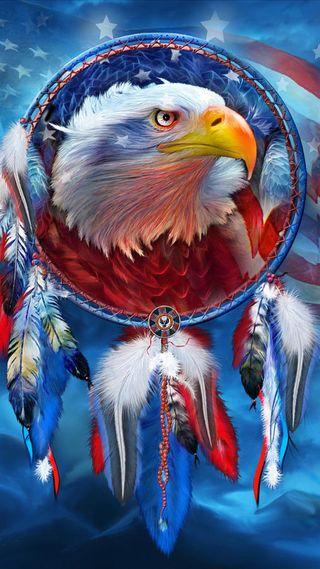 Обои на телефон перо, флаг, сша, родной, птицы, орел, мечта, ловец, америка, usa, us of america