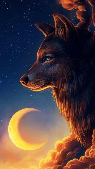 Обои на телефон семья, природа, животные, волк, z-, wolfs our pack and family, nature wolfs