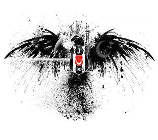Обои на телефон картал, бесикташ, турецкие, орел, каракартал, bjk