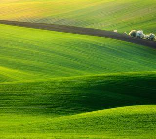 Обои на телефон поле, природа, зеленые, nature wallpapers, green field