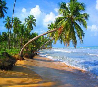 Обои на телефон великий, приятные, пляж, взгляд, great beach